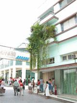 Los jardines colgantes del boulevard santaclareño.